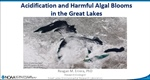 Acidification and Harmful Algal Blooms in the Great Lakes