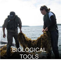 Biological Tools