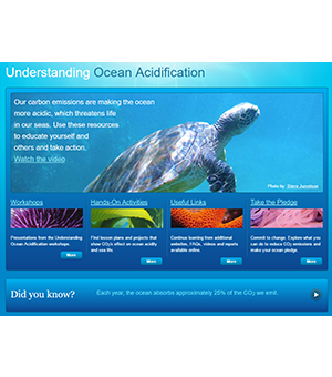 UNDERSTANDING OCEAN ACIDIFICATION